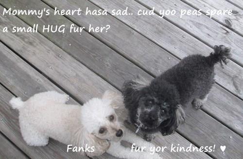 Mommy's heart hasa sad.. cud yoo peas spare a small HUG fur her?              Fanks         fur yor kindness! ♥