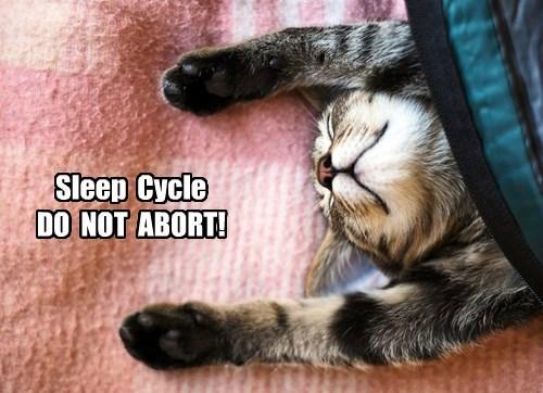 Sleep  Cycle  DO  NOT  ABORT!