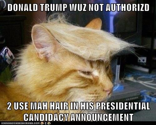 DONALD TRUMP WUZ NOT AUTHORIZD  2 USE MAH HAIR IN HIS PRESIDENTIAL CANDIDACY ANNOUNCEMENT