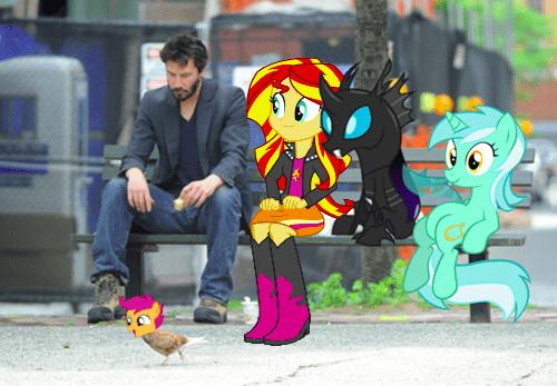 lyra,chicken,sad keanu,Scootaloo,bench