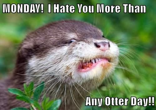 MONDAY!  I Hate You More Than  Any Otter Day!!