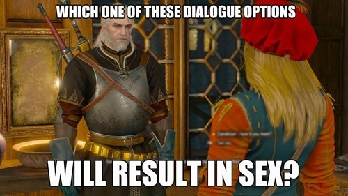 Pretty Much the Only Way People Play The Witcher 3