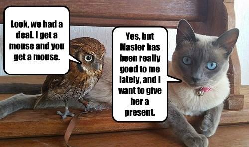 Look, we had a deal. I get a mouse and you get a mouse.