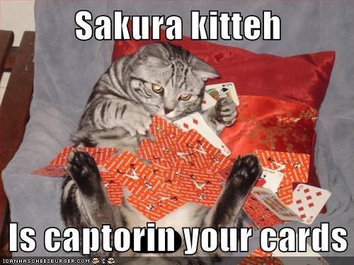 Sakura kitteh  Is captorin your cards