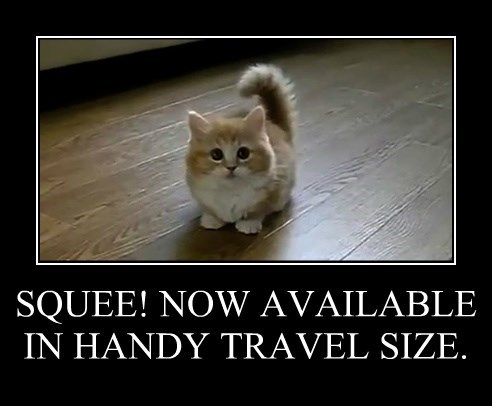 SQUEE! NOW AVAILABLE IN HANDY TRAVEL SIZE.