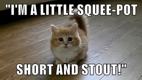 """I'M A LITTLE SQUEE-POT  SHORT AND STOUT!"""