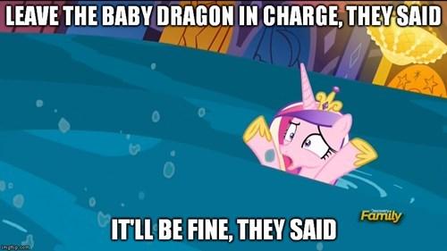spike,princess cadence,worst pony