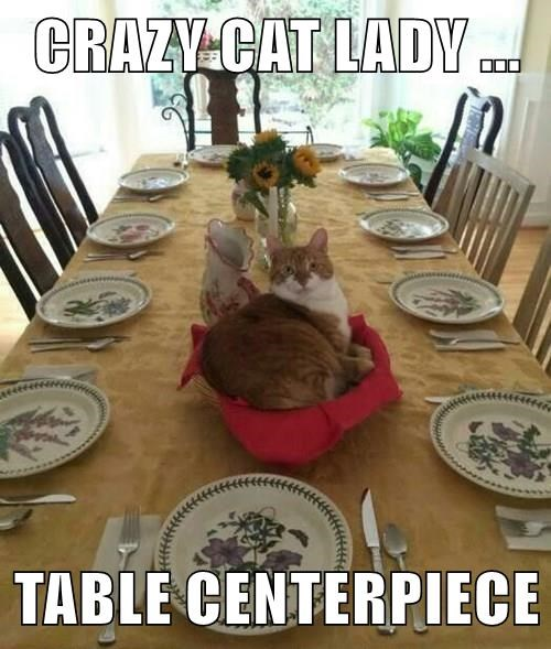 CRAZY CAT LADY ...  TABLE CENTERPIECE