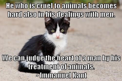 He who is cruel to animals becomes hard also in his dealings with men.  We can judge the heart of a man by his treatment of animals.                                                  - Immanuel Kant