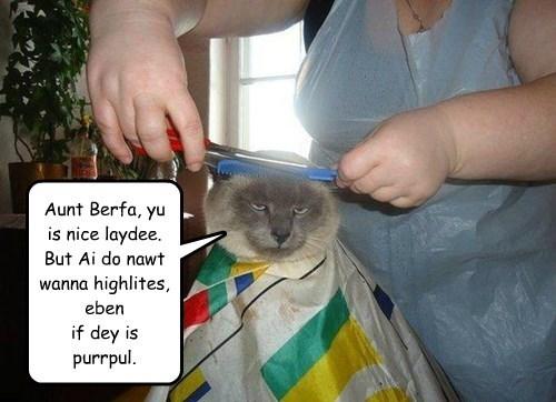 Aunt Berfa, yu is nice laydee. But Ai do nawt wanna highlites, eben if dey is purrpul.