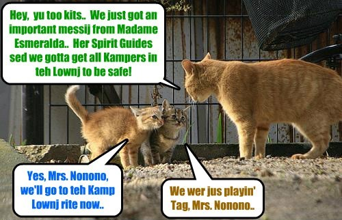 KAMP 2015: Having reseeved a caushunary warning from Madame Esmeralda, Kamp Kownsellors make shur dat all Kampers (an' espeshully teh Ittie Bittie Kampers) dat ar not in teh Posse will be safely together in teh Kamp Lounge!