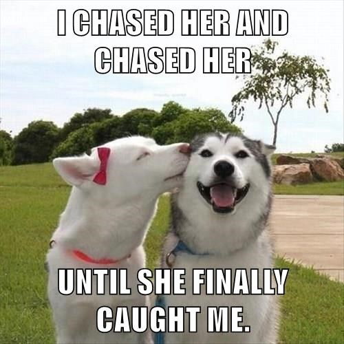 I CHASED HER AND CHASED HER  UNTIL SHE FINALLY CAUGHT ME.