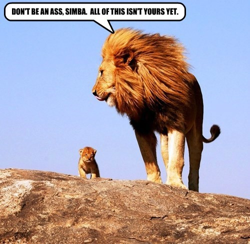 DON'T BE AN ASS, SIMBA.  ALL OF THIS ISN'T YOURS YET.