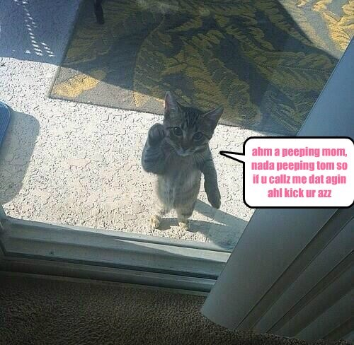 ahm a peeping mom, nada peeping tom so if u callz me dat agin ahl kick ur azz