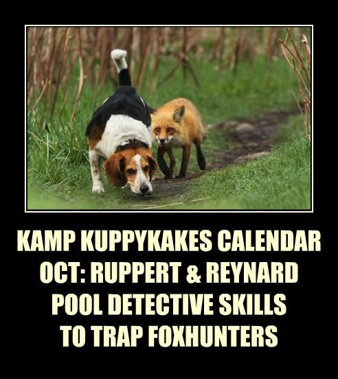 KAMP KUPPYKAKES CALENDAR OCT: RUPPERT & REYNARD POOL DETECTIVE SKILLS TO TRAP FOXHUNTERS