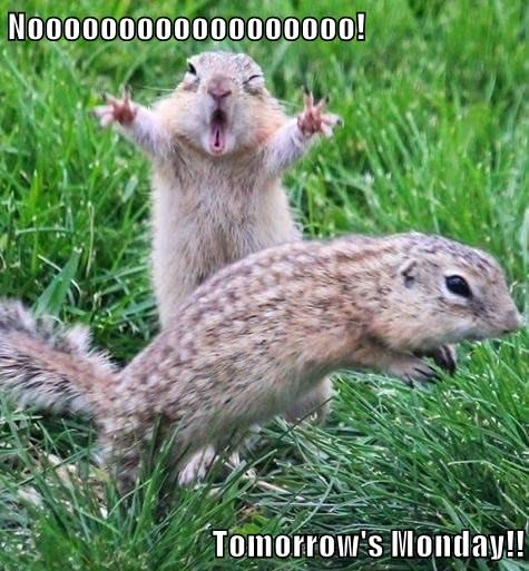 Noooooooooooooooooo!  Tomorrow's Monday!!