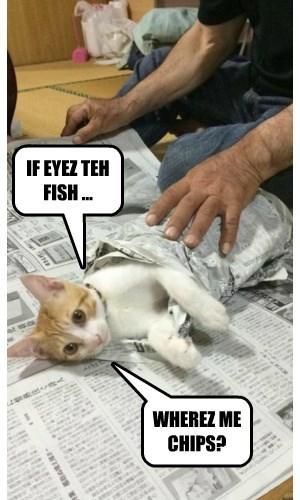 I Prefer My Cat Battered