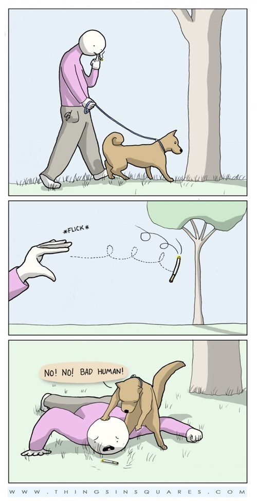 Anti-Smoking Dog