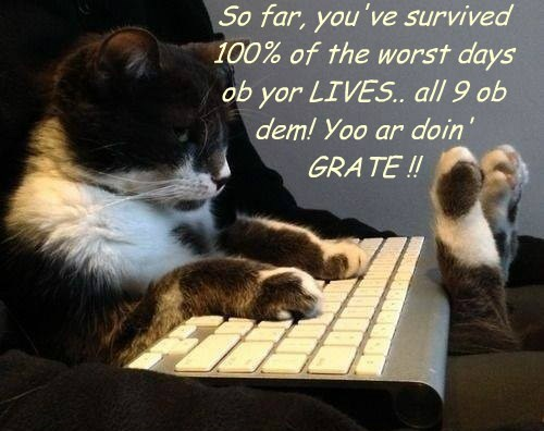 So far, you've survived 100% of the worst days ob yor LIVES.. all 9 ob dem! Yoo ar doin' GRATE !!