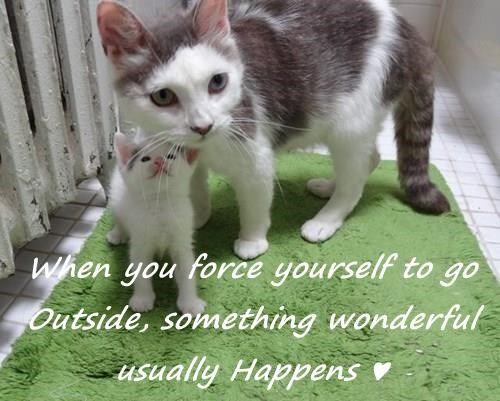 When you force yourself to go Outside, something wonderful usually Happens ♥