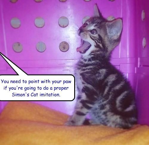 Not quite Simon's Cat