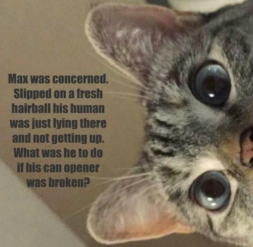 Max was concerned.