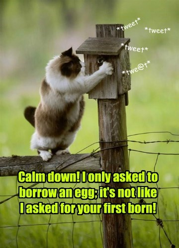 Calm down! I only asked to borrow an egg; it's not like  I asked for your first born!