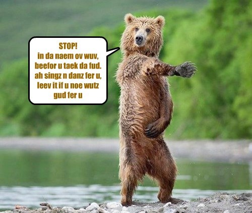 STOP!  in da naem ov wuv, beefor u taek da fud. ah singz n danz fer u, leev it if u noe wutz gud fer u