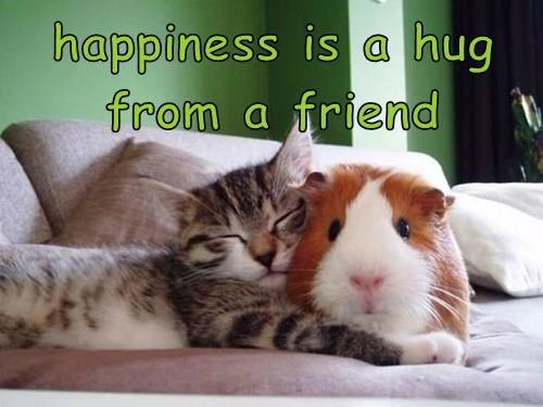 happiness is a hug from a friend