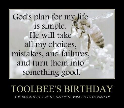 TOOLBEE'S BIRTHDAY