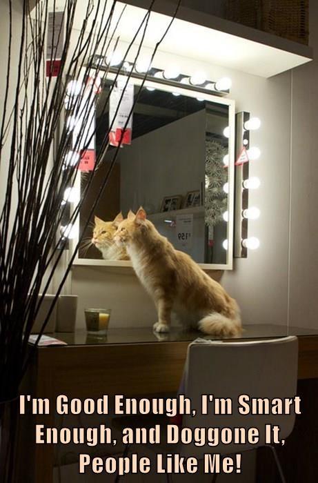 I'm Good Enough, I'm Smart Enough, and Doggone It, People Like Me!