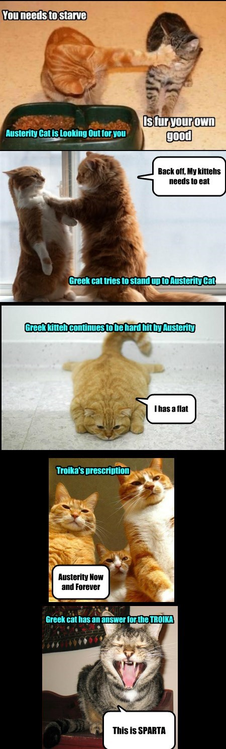 The Saga of the Greek Cat and Austerity Cat