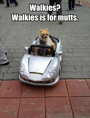 Walkies? Walkies is for mutts.