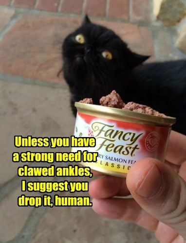 Unless you have  a strong need for clawed ankles,  I suggest you drop it, human.