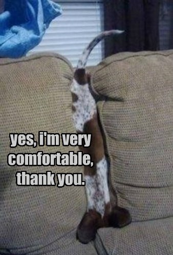 yes, i'm very comfortable, thank you.