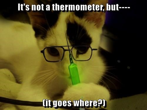 It's not a thermometer, but----  (it goes where?)