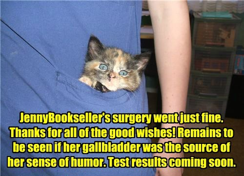 Report from Dr. Tinycat