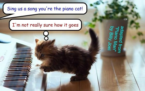 """Piano Cat"" (adapted from ""Piano Man"" by Billy Joel)"