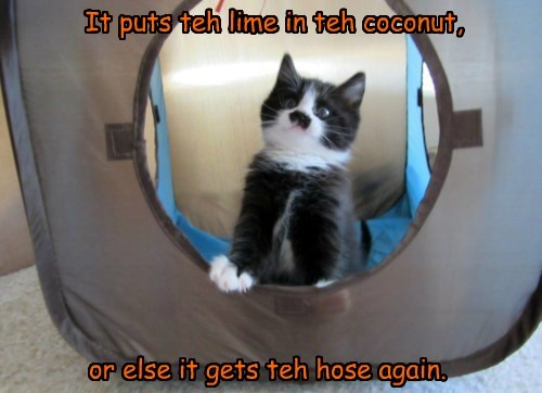 It puts teh lime in teh coconut, or else it gets teh hose again.