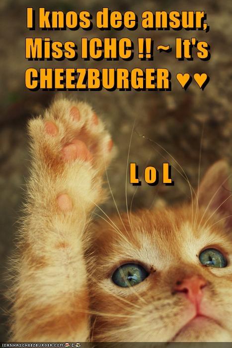 I knos dee ansur, Miss ICHC !! ~ It's CHEEZBURGER ♥♥                L o L