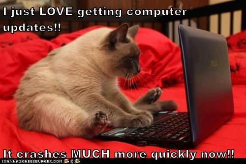 computer,crash,Cats