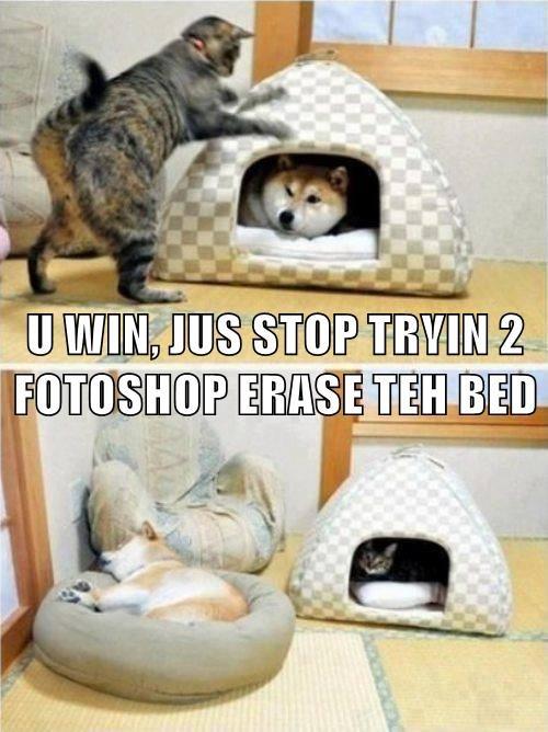 U WIN, JUS STOP TRYIN 2 FOTOSHOP ERASE TEH BED