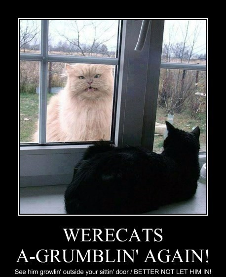 WERECATS A-GRUMBLIN' AGAIN!