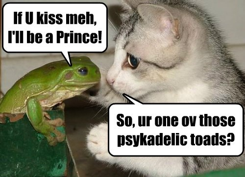 Licking Toads