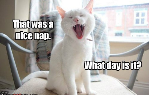 That was a nice nap.
