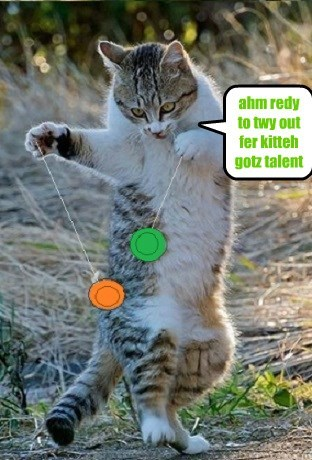 ahm redy to twy out fer kitteh gotz talent