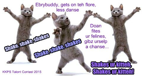 Less heer it fur Catsy an teh Funshinez Band!
