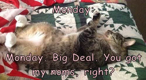 Monday:   Monday. Big Deal. You got my noms, right?