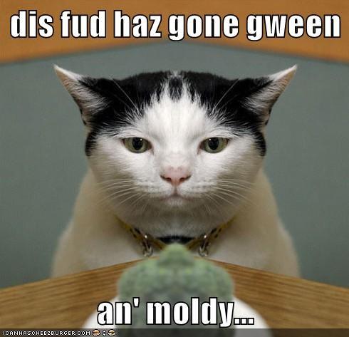 dis fud haz gone gween  an' moldy...