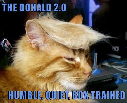 THE DONALD 2.0   HUMBLE, QUIET, BOX TRAINED